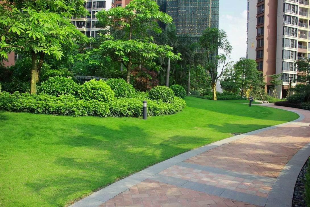 道路景观植物配置采用路旁留草地,形成内紧外松的手法,道路两边